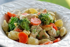 pasta with vegetables and chicken 2