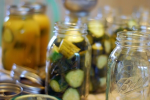 pickles in process