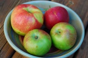 apples in bowl 2