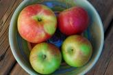 apples in bowl1