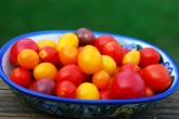 bowl of colorful tomatoes