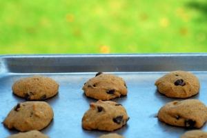pumpkin cookies on cookie sheet 3