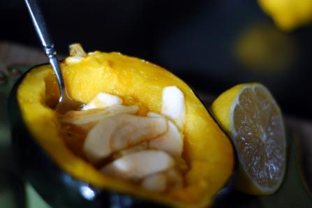 acorn squash 2